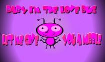 Love Bug eCard