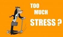 Stress! eCard