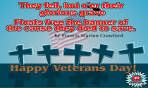 Veterans Day 4 eCard