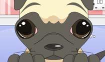 Forgive Me Puppy Dog Eyes eCard