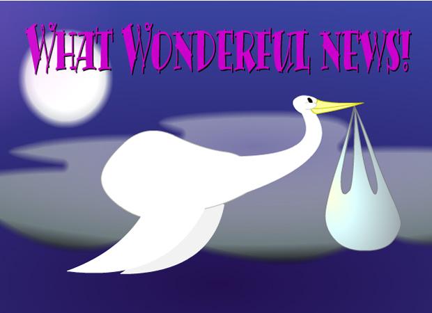 Congratulations Stork Baby
