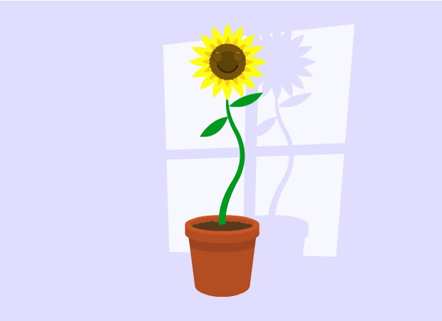 Hug & Friends Sunflower friend