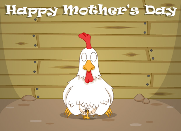 Mothers Day Mother Hen