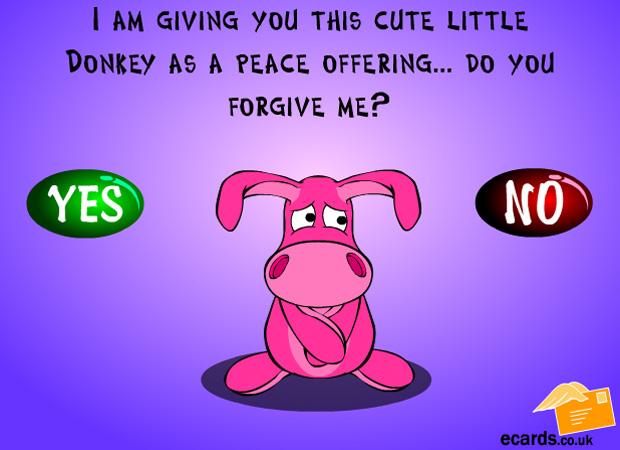 Sorry Forgive Me Donkey